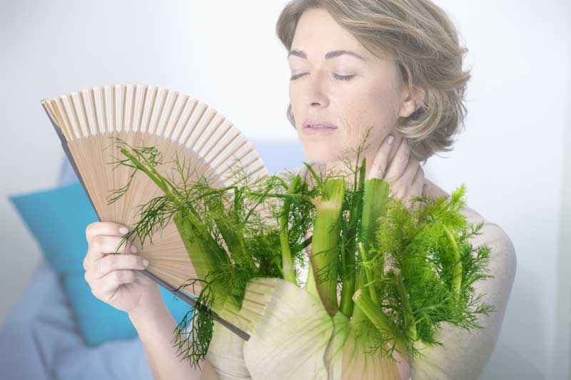 یائسگی، هورمون درمانی، رازیانه، Fennel 'safe and effective' for easing menopause symptoms, study confirms
